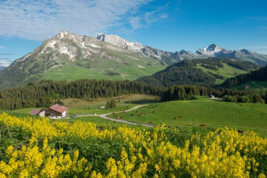 Excursion & Transport dans les Alpes